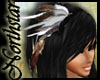 ~NS~ Native hawk feather