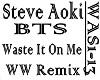 STEVE AOKI - WASTE IT ON