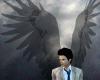Supernatural Wings