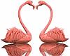 ⛧ Flamingos Ani. Refl.