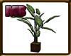[7V3] Plant