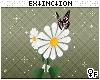 #ukki: flower