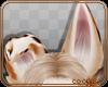 💎 Abby   Ears 3