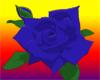 [AR]Blue Rose