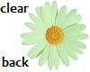 TF* Green Daisy