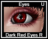 Dark Rud Eyes Right