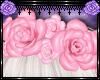 ♡ Ravish Roses