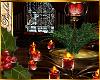 I~Cocoa Candle Plant