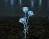 Eternal Crystal Roses