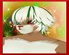Howlidae Hair V2 (M)