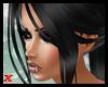 Sandra Black Shine