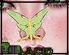 Nose Luna Moth