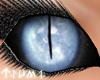 ~Tsu Ice DragonDoll Eyes