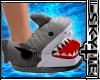 Shark 🦈 Slippers [M