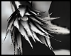Dark Zebra Fur Cuffs M/F