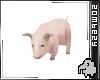 Piglet PET