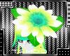 T|» Head Flower
