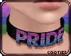 🏳️🌈Bi Pride