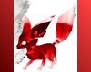 Red n' White Fox Kitt