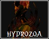Hydrozoa Body Spikes