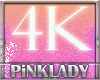 <P>Support 4K