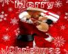 JS Christmas Pic 2