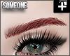 + sleek brows red