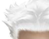 8. White haerrr