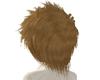 Chestnut Hair 1