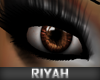 !R  Celebrity Eyes BROWN
