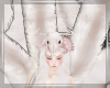 ♥ Kitsune Ten Tails*