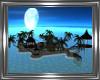 ! Honeymoon Island