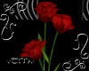 vTMv Red Passion Rose