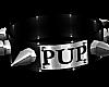 B! PVC Pup Collar