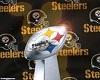 Steelers Banner 3