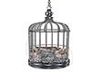 Birdcage Swing