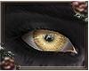 [a] Demona Eyes v2