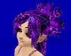 Purple Olivia