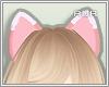 RU:Lupine Ears*_*