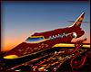 Gold Leaf Maroon Jet