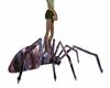 Hair Spider