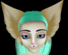 kayu custom ears