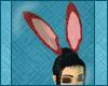 Fire PJ Bunny Ears