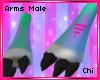 [Chi]Novi Male Arms