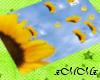 -xMMx- Sunflower Mat