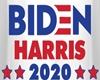 *Biden/Harris Tee Male*