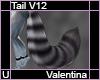 Valentina Tail V12