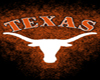 :) Texas Longhorn