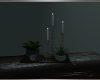 BRS! Plants and Candles