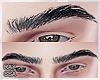 ®Adam A. Eyebrows Black
